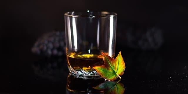 喝威士忌時所用的威士忌杯